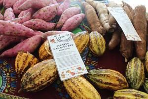 Brňané ochutnávali ugandské ovoce.