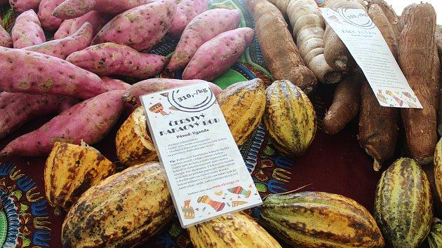 Voňavá Afrika v Brně: lidé ochutnávají největší ovoce na světě, váží až 50 kilo