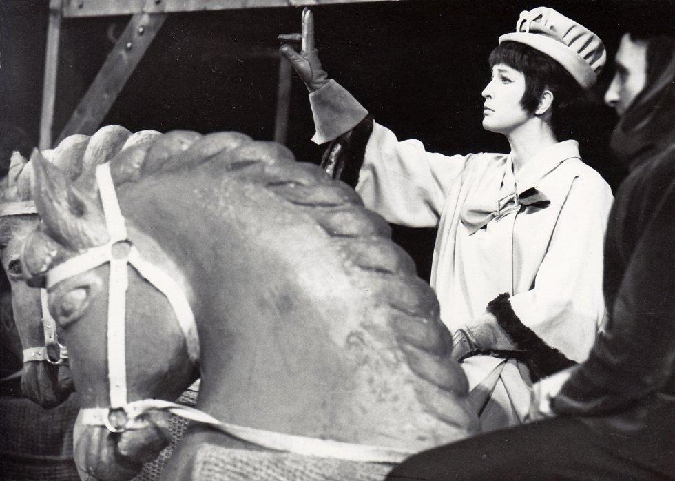 Ve dvou různých inscenacích Zkrocení zlé ženy v Národním divadle Brno se Helena Kružíková ujala role Kateřiny. Bylo to v letech 1955 a 1967 (na snímku).