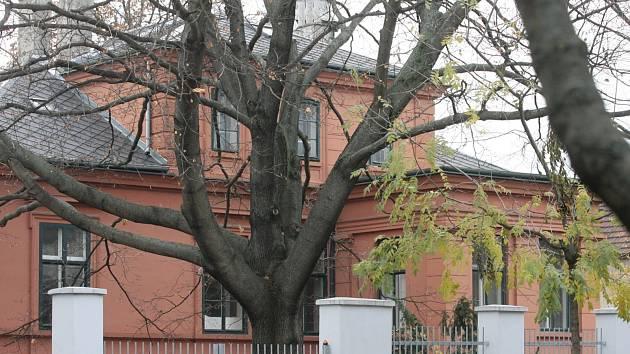 Kaiserovu vilu umístil stavitel na umělou terasu ve vyšší části lužáneckých zahrad. Při navrhování zvolil Arnold variantu domu se třemi trakty a jedním patrem.