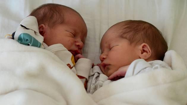 Oddechli si s rodiči. Dvojčata Jonášek a Eliášek z Blanenska jsou na světě.