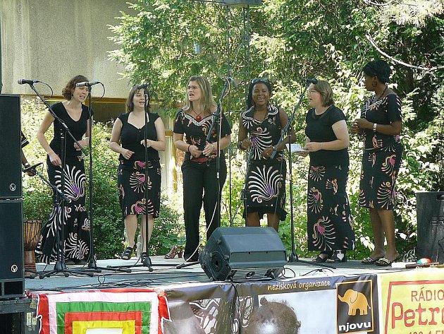 Lužánky ovládne druhý ročník Afrického festivalu.