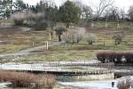 V současné době tvoří park na Kraví hoře především travnaté plochy protkané řadou cest.