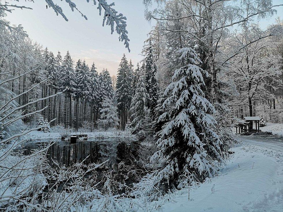 Lesní cesta Schindlerova a pohled na retenční nádrž a odpočívadlo.