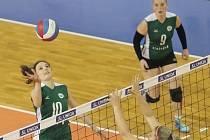 Volejbal KP Brno. Ilustrační foto