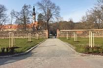 Oslavanský zámecký park ozdobí kaštany a hrušně.