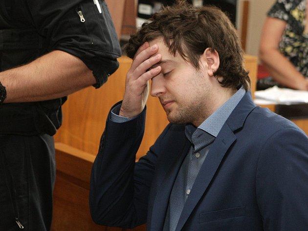 Kevin Dahlgren vpondělí stanul ubrněnského krajského soudu. Je obžalovaný zvraždy čtyř lidí.