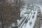 Znojmo zasypal letošní první sníh.