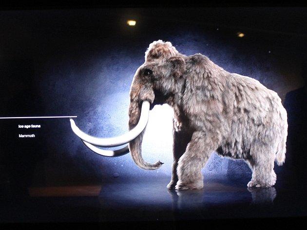 Archeopark vPavlově na Břeclavsku přivítal na konci května první návštěvníky. Unikátní expozice lidi zavede za pomoci moderních technologií do éry lovců mamutů.