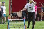 Ve Znojmě se o konala soutěž v králičím hopu. Na její první ročník dorazily tři desítky soutěžících.