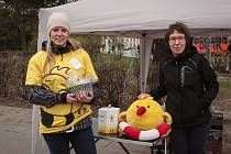 Koupí peříčkové brože přispěli lidé na pomoc potřebným.