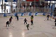 Fanoušci na brněnském Olympijském festivalu i přes prohru českého hokejového týmu nad ruským neztráceli dobrou náladu.