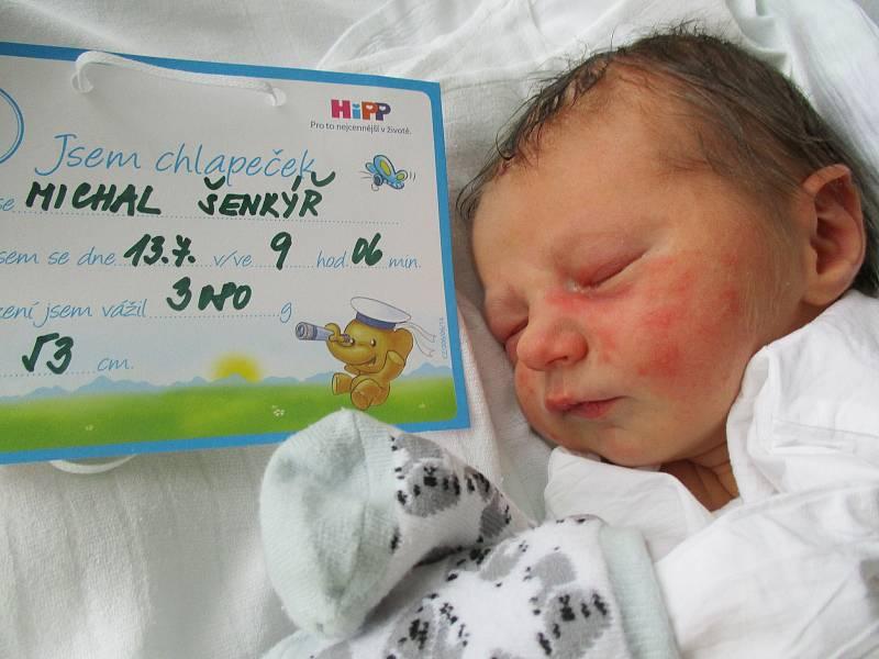 Michal Šenkýř, 13. 7. 2021, Hrušky, Nemocnice Břeclav, 3080 g, 53 cm