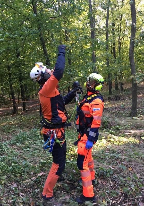 Mladá dívka se zranila pádem z koně v lese nedaleko Kuřimi na Brněnsku.