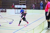 Mezinárodního turnaje Prague Floorball Cup se zúčastnilo třináct brněnských týmů.
