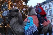 Tři králové si letos osedlali koně, lamu i velblouda. Tradiční kostýmový průvod vyšel ve čtvrtek odpoledne za zvuku fanfár z brněnského Petrova.