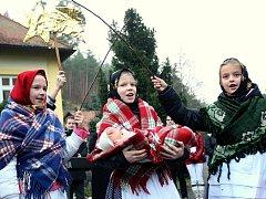Jedle ojíněná z Bílovic nad Svitavou je nový vánoční strom pro Brno.
