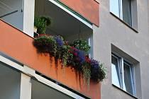Květiny zaujaly porotu soutěže Jundrovský truhlík natolik, že se třiatřicetiletý muž stal na začátku října vítězem prvního ročníku o nejkrásnější květinovou výzdobu rodinných i bytových domů v této městské části.