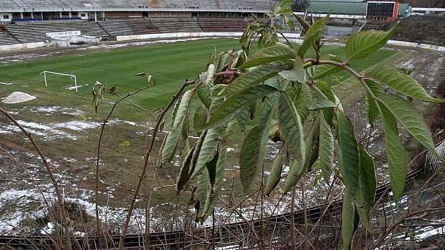 Zchátralý stadion za Lužánkami