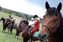 Tradiční koňské závody v Bedřichovicích.