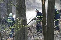 Devět jednotek hasičů likvidovalo požár lesa v brněnské městské části Jundrov.