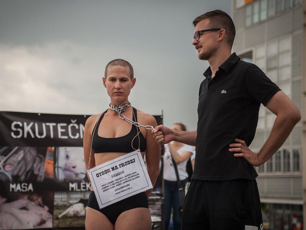 Aktivisté lidem přicházejícím na výstaviště rozdávali letáky a symbolicky nabízeli lidské otroky, kteří byli, podobně jako hospodářská zvířata, přivázaní na řetězech.