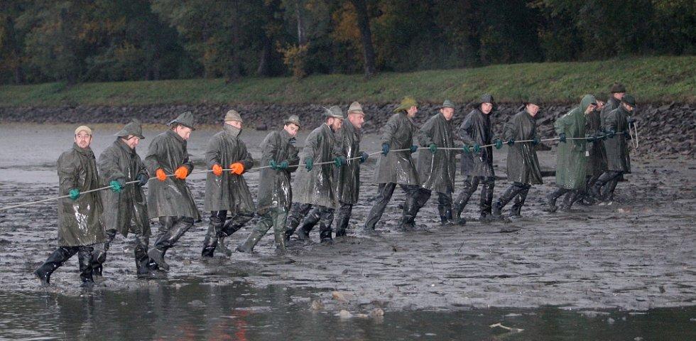 Výlov rybníka Vrkoče na Pohořelicku.
