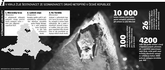 Vkraji žije šestadvacet ze sedmadvaceti druhů netopýrů vČeské republice.