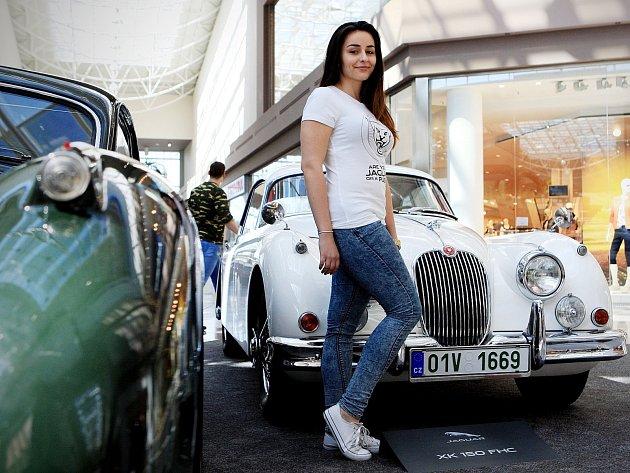 Silné motory, luxusní provedení. Ve čtvrtek večer v brněnské Olympii zahájila výstavu svých vozů legendární britská značka Jaguar.