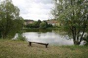 Okolí medláneckého rybníka.
