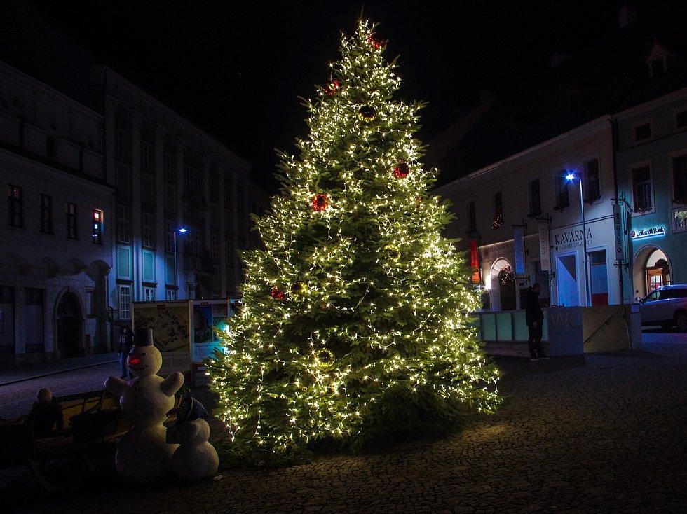 Vánoční strom na Horním náměstí ve Znojmě.