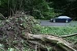 Cestu z Adamova ve směru na Křtiny lemují po bouřkách z minulého týdne vyvrácené stromy.
