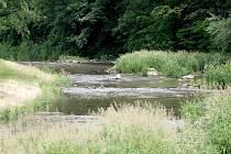 Řeka Oslava, na které může vyrůst přehrada Čučice.