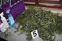 Kriminalisté objevili v domě mladíka přes tři kilogramy kvalitní marihuany.