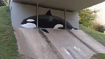 Vydařená díla živočichů jsou k vidění pod mostem v brněnských Bohunicích a ve Starém Lískovci.