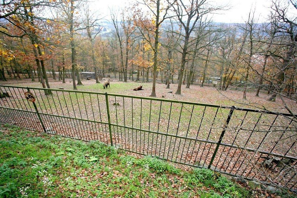 Pozemky Mniší hory původně patřily k hradu Veveří, po roce 1948 přešel kopec do majetku ministerstva zemědělství.