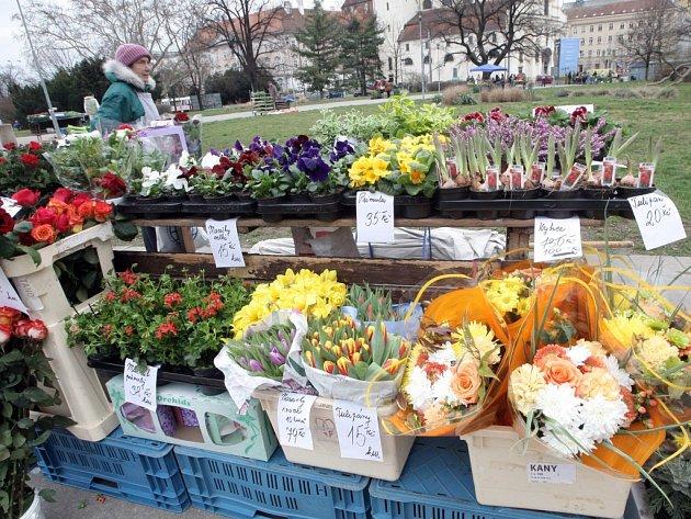 Zelný trh se dočasně přesunul na Moravské náměstí.