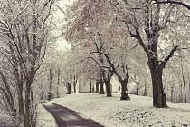 Zima dorazila do Ivančic a sníh pokryl město i okolí.