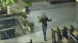 Boj s břečťanem sváděl opilý mladík v ulici Bašty v Brně.