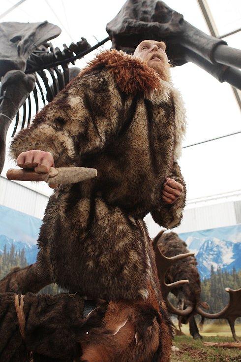 Realistické modely vyhynulých zvířat z doby ledové si lze od pátku prohlédnout na nové výstavě v brněnské městské části Královo Pole.