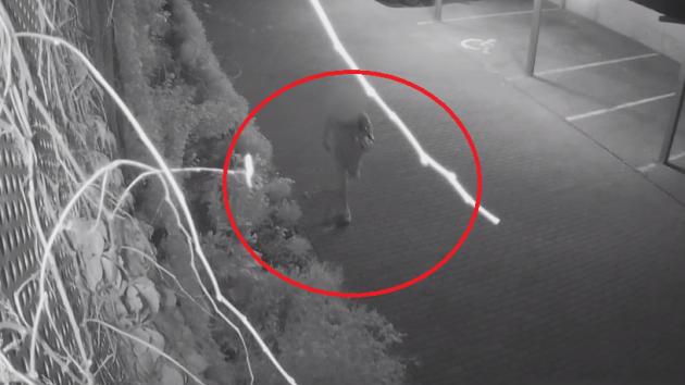 Kamera zachytila mladíka před vraždou důchodce