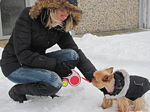Psí oblečky v mrazu nejsou na škodu.