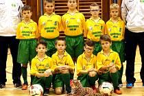 Přípravka U9 FK Baník Sokolov