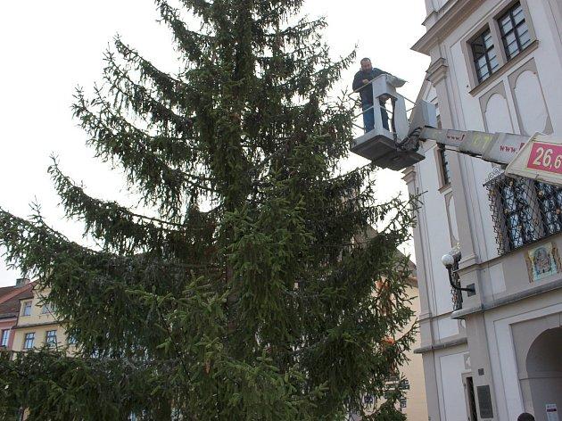 Nový vánoční strom, který stojí v Lokti od úterý, už pracovníci zdobí.