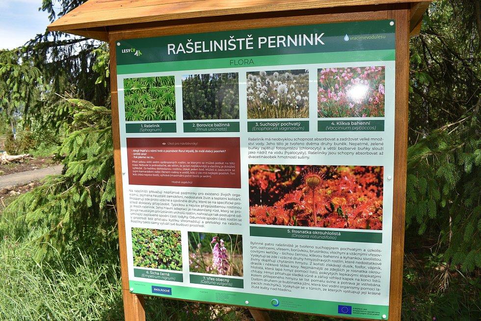 Rašeliniště mezi obcemi Pernink a Abertamy