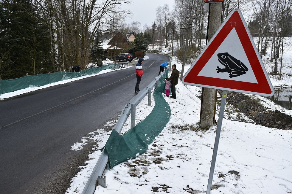 Natahují u silnice zábrany. Chtějí tak zamezit masakru žab.