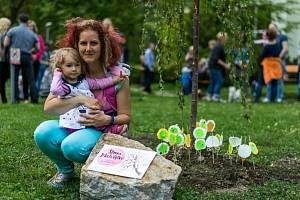 Strom mateřství Sokolov