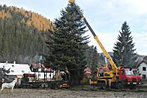 Cesta vánočního stromu na kraslické náměstí