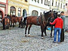 V seriálu GENIUS se stal Loket rodištěm Alberta Einsteina a na náměstí byli při natáčení k vidění třeba i koně.