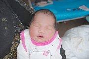 Nhi Bao Nguyen